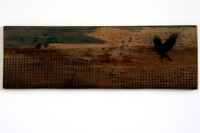 Vogelvlucht Cyanotype & grafiek op hout
