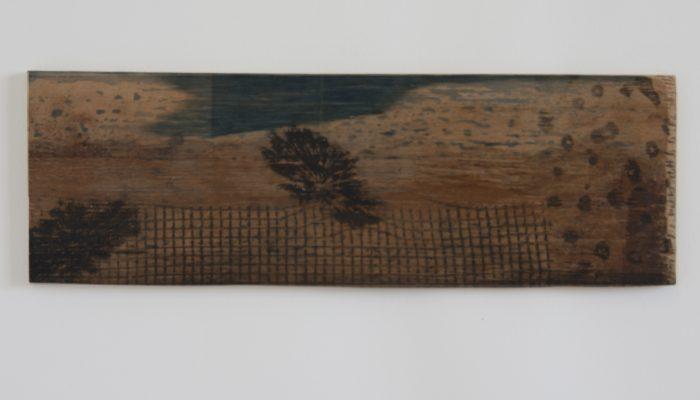 Bloemenlandschap Cyanotype & grafiek op hout