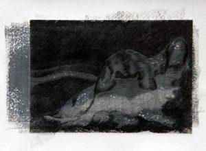 Aards, 14,5 x 11 cm grafiek